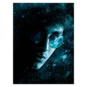 Harry Potter. Размер: 30 х 40 см